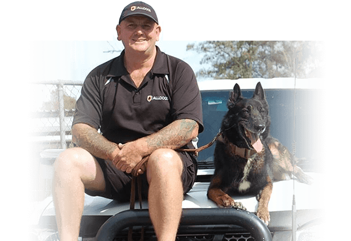 Head trainer Jamie Davis with German Shepard on car