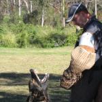 Kamie with barking guard dog