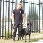 Mason onsite with K9 security dog