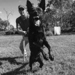 Black and white guard promo shot